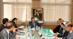 OMPIC: 75.000 Businesses Created in Morocco in 2016