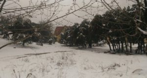 Heavy Snowfall in Several Parts of Morocco Next Week