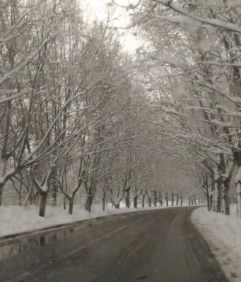 In Pictures Glamorous View of Ifrane Under Snow....