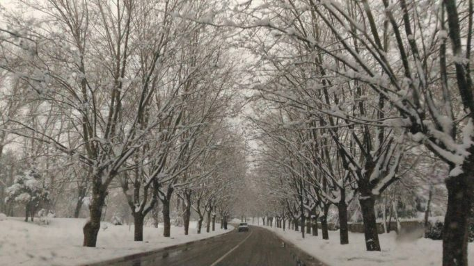 In Pictures: Glamorous View of Ifrane Under Snow