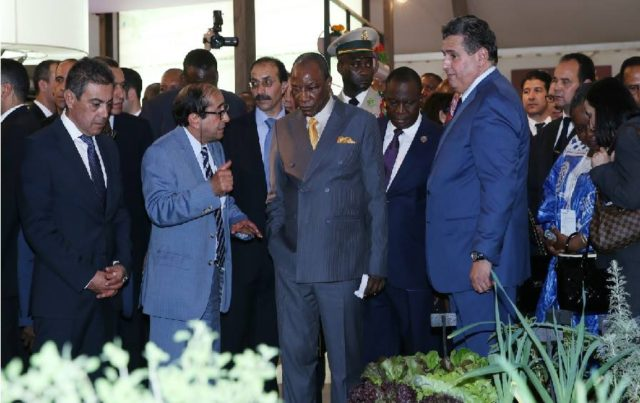 12th International Agriculture Fair Opens in Meknes to High Expections