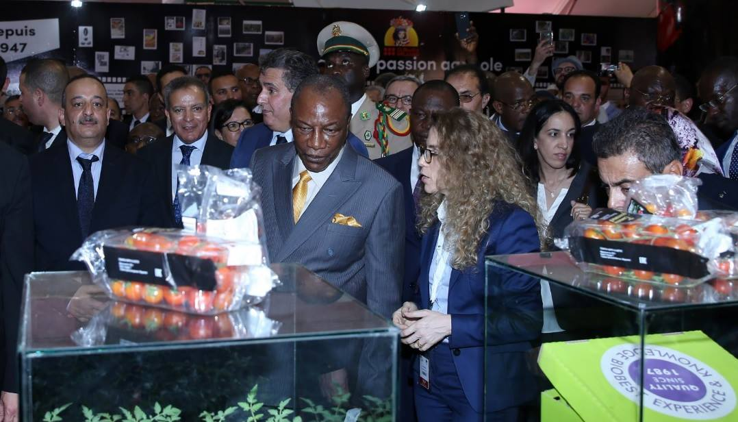 12th International Agriculture Fair Opens in Meknes to High Expections............