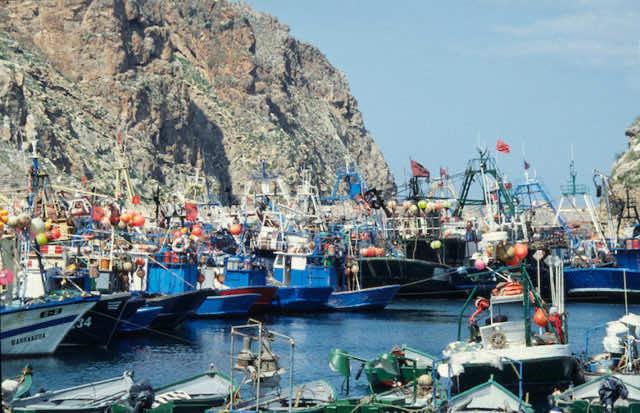 Al Hoceima Fishermen To Resume Activities Next Week