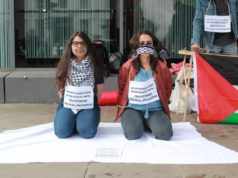 Human Rights Activists Begin Hunger Strike in Solidarity with Palestinian Prisoners