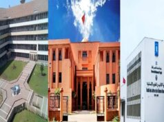 ShanghaiRanking: Morocco's Cadi Ayyad University Best in Francophone Africa