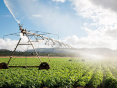 The 'Green Morocco' Plan Strengthens Localized Irrigation
