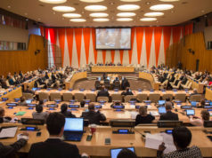 the United Nations Economic and Social Council (ECOSOC)