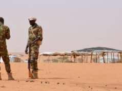 France Urges UN to Deploy Forces to Combat Terrorism in Sahel Region