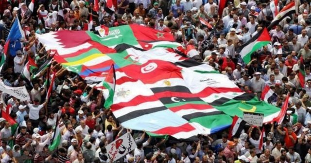The Educational and Cultural Implications of the Arab Spring