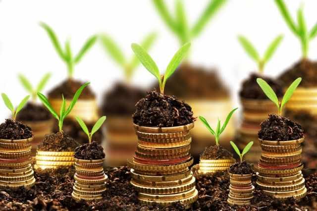 Capital Investment: Morocco Ranks 5th in MENA Region