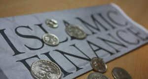 Participatory Finance