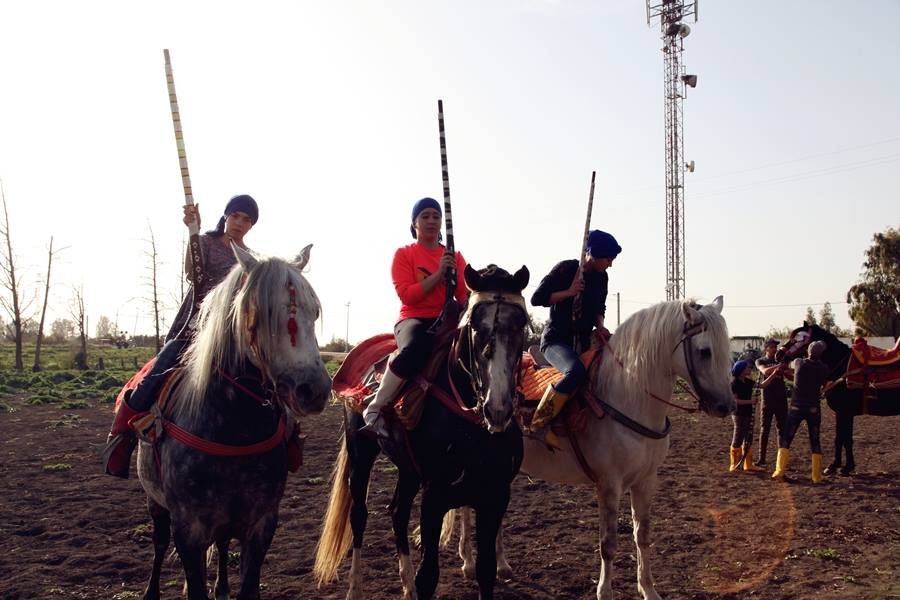 Afrae Benbih, a Woman 'Teborida' Horseback Rider, Steals the Show in Sidi Kacem