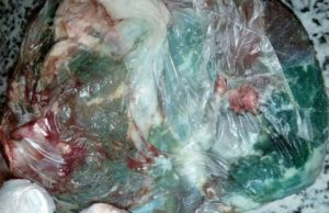 Discolored, Unsanitary Eid al Ahda Meat Causes Public Worry