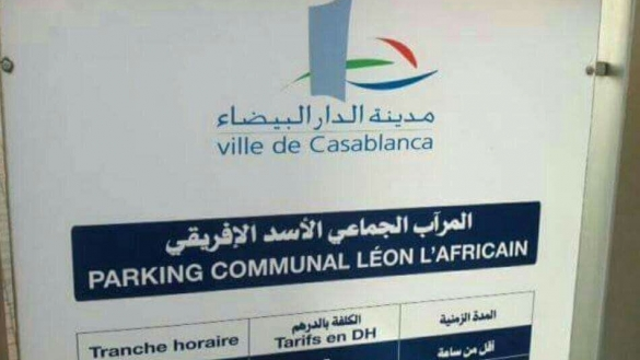 Leo Africanus, the 'African Lion'? Morocco Laughs at Casablanca Municipality's Clueless Translation