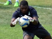 'Moroccan Team Does Not Scare Me,' Says Ivory Coast Goalkeeper Sylvain Gbohouo