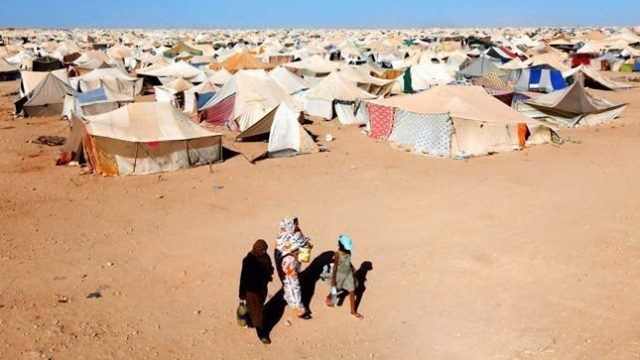 Hundreds of Sahrawis Flee Tindouf Camps Fearing Polisario Brutality