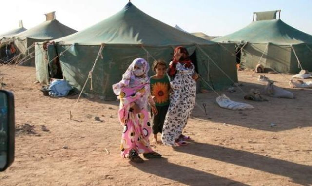 Number of Refuges in Tindouf Camps Doesn't Exceed 90,000: UNHCR