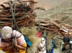 Fire wood, Rural Areas, Cold, Morocco