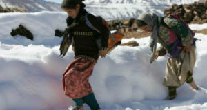 Great Cold-Winter campaign