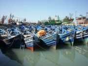 Moroccan Fishermen in Essaouira