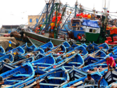 European Fishing Boats to Leave Morocco after Renewal Negotiations Failed