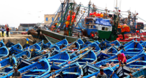 China Takes Interest in Morocco's Fisheries and Aquaculture Assets