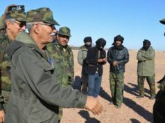 Armed Polisario Elements Assault MINURSO-Supervised Area near Tindouf