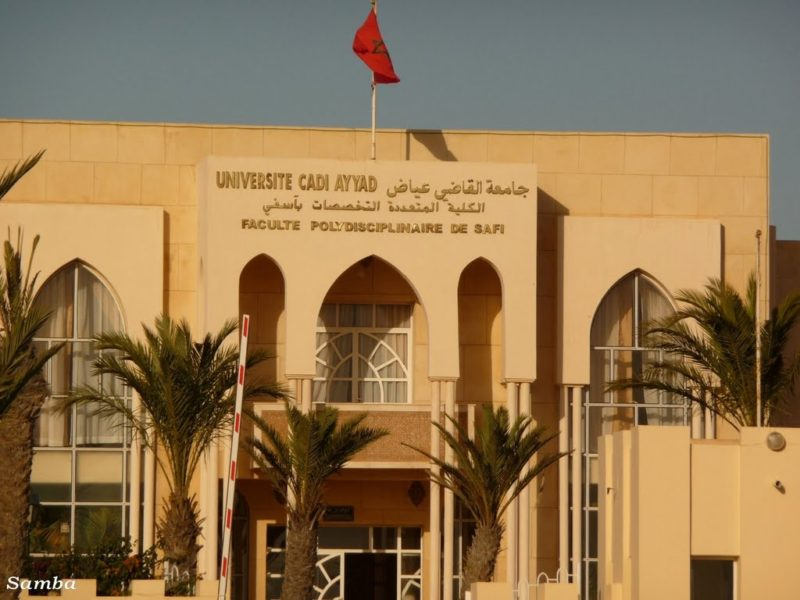 Times Ranking: Cadi Ayyad University Best in Morocco, Maghreb