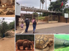 TripAdvisor Awards Rabat National Zoo with 2018 Excellence Certificate