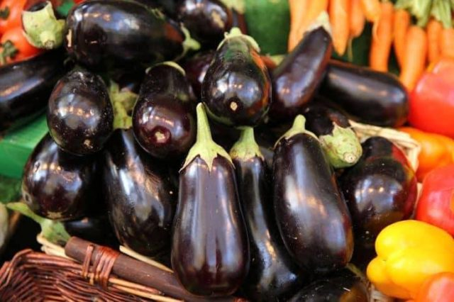 Moroccan Eggplant Exports to EU Maintain 2016's Bumper Crop Level