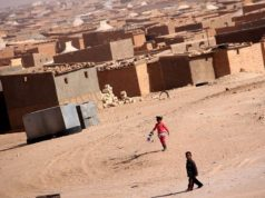 United Nations Follows up on Algerian Migrant Deportations