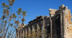 Volubilis: Morocco's Underrated Tourist Destination