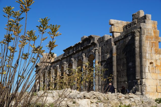 Volubilis: Morocco's Underrated Tourist Destination