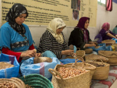 EBRD Loans Banks €35 Million for Moroccan Women Entrepreneurs