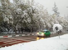 Weather Forecast: Snowfall and Thunderstorms to Start Monday
