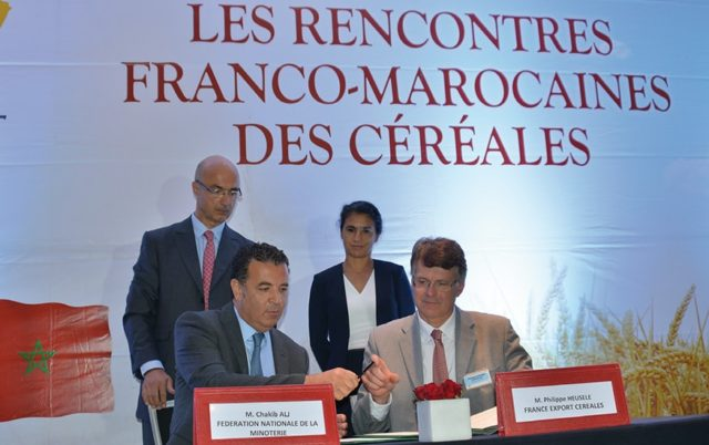 France to Compete with Russia, Ukraine to Export Wheat to Morocco