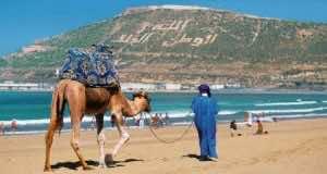 Agadir Records 4.5 Million Overnight Stays in 10 Months