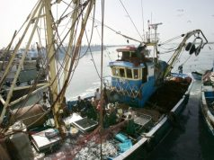 European Parliament's Budget Committee Approves EU-Morocco Fisheries Deal