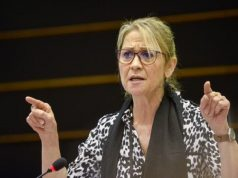 EU MP: Europe Would Gain from Further Integration with Morocco