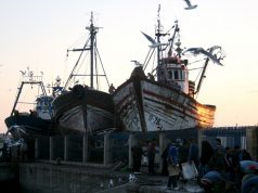 Marrakech to Host High-Level Conference to Discuss Fisheries Challenges in Mediterranean