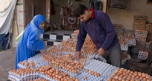 Morocco Produces 6.6 Billion Eggs Annually, Consumes 185 Per Person