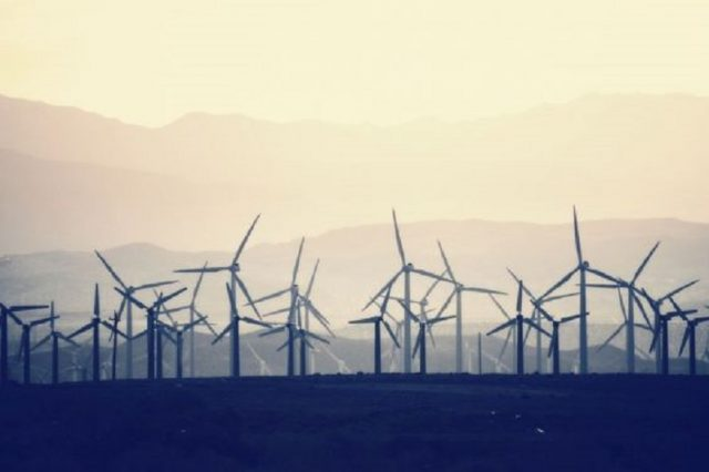 Opinion: Dakhla's Blockchain Wind Farm Offers a Sustainable Path Forward
