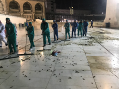 Video: Hundreds of Black Crickets Invade Mecca's Grand Mosque
