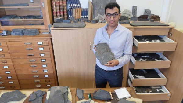 Moroccan-French Geologist Discovers the Oldest Evidence of Mobility