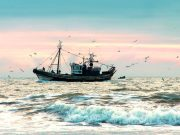 Fishing ship of Moroccan shores
