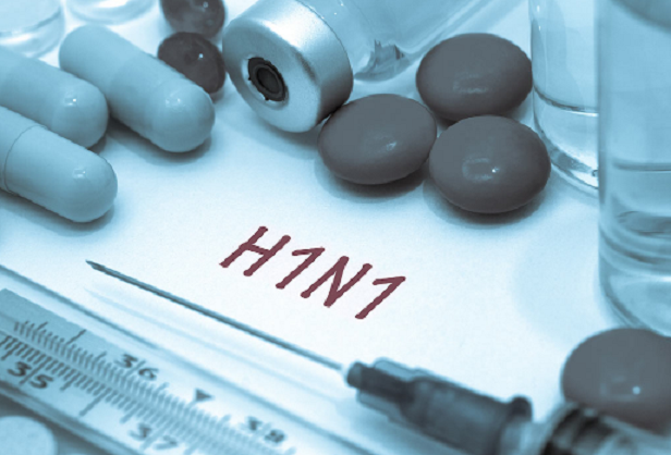 Morocco's H1N1 Surveillance and Outbreak Compared to the Rest of the MENA Region
