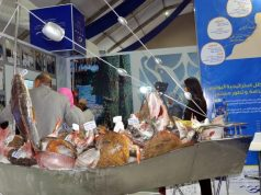 Morocco Renews 3 Fisheries Partnerships with France at Agadir Fair