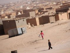 Pro-Polisario Activist: Urgent Need to End Tragedy in Tindouf Camps