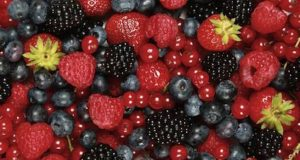 Morocco's Red Fruits Exports Up 48%, Generate MAD 5 Billion