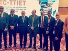 Polisario Delegation at African Union Meeting in Cairo